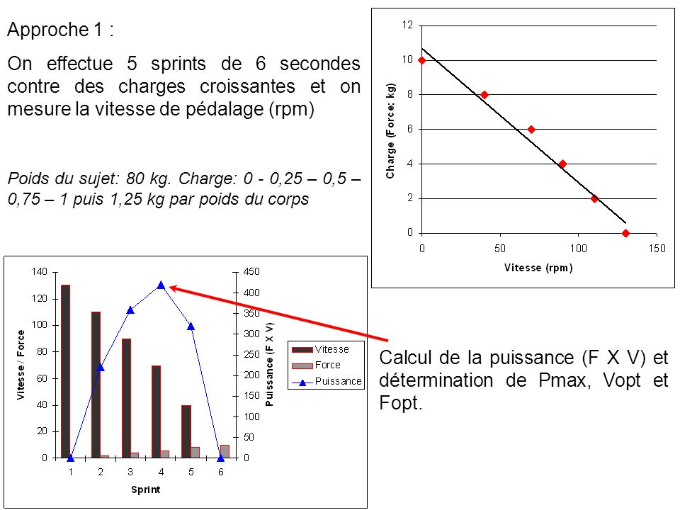 Calcul de la puissance (F X V) et détermination de Pmax, Vopt et Fopt.