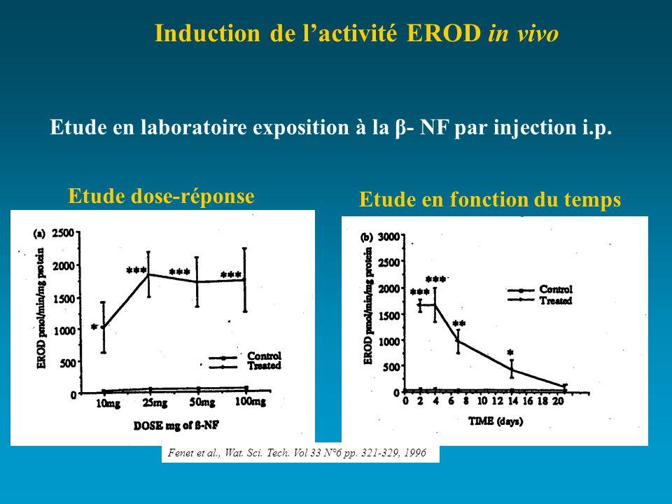 Etude en laboratoire exposition à la β- NF par injection i.p.