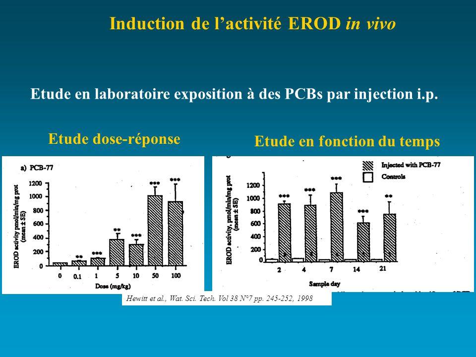 Etude en laboratoire exposition à des PCBs par injection i.p.
