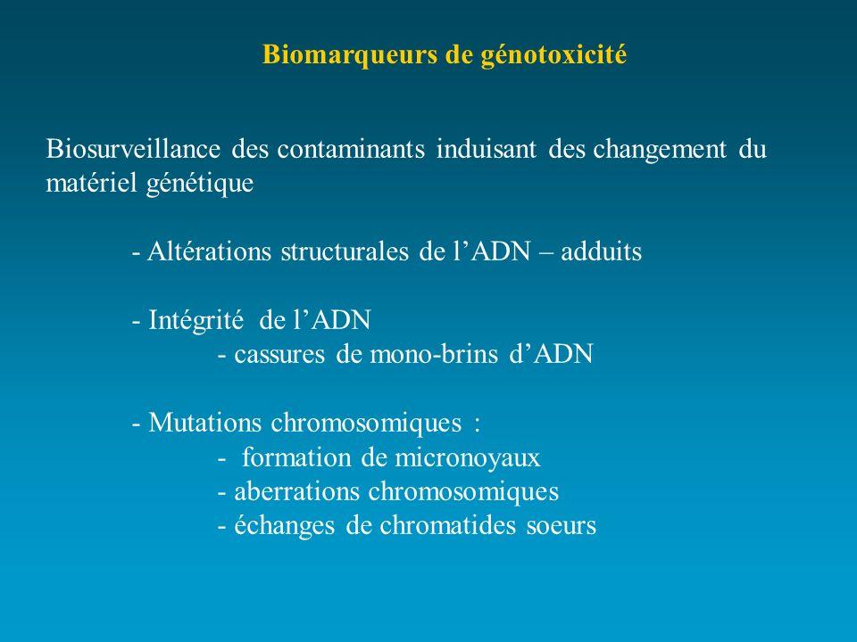 Biomarqueurs de génotoxicité