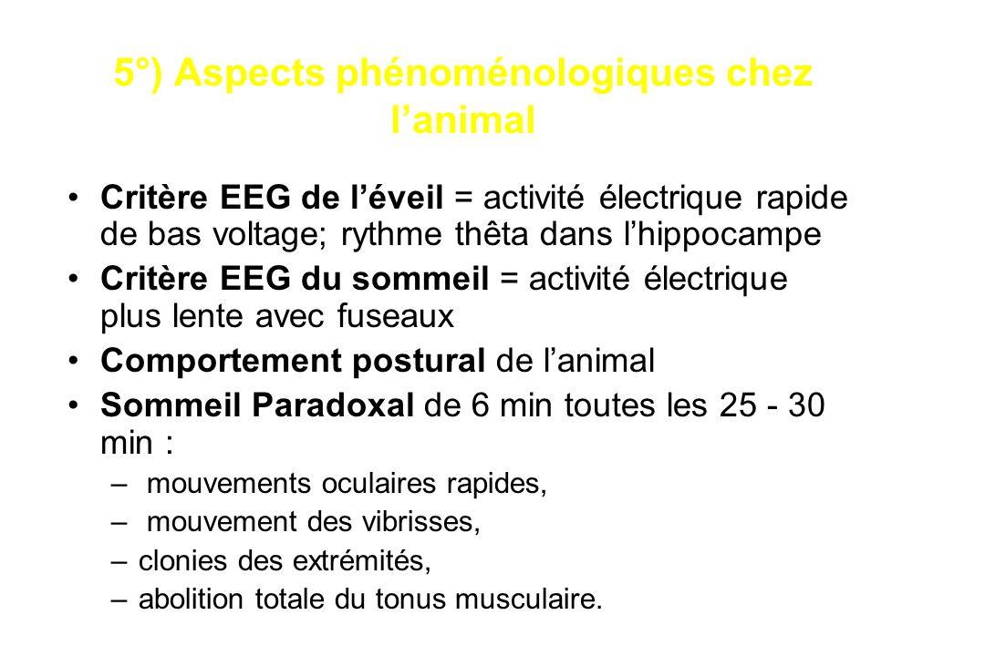 5°) Aspects phénoménologiques chez l'animal