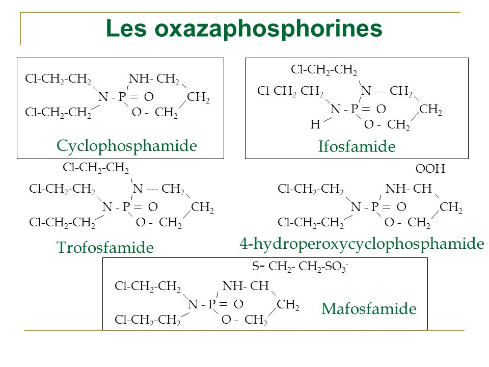 Les oxazaphosphorines
