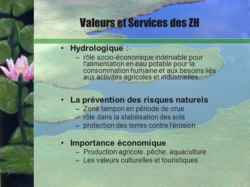 Valeurs et Services des ZH