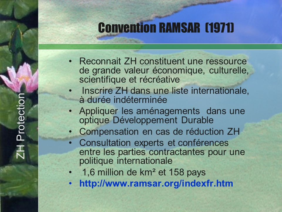 Convention RAMSAR (1971) Bullet Point Slide ZH Protection