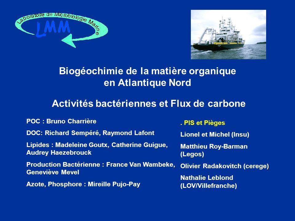 Biogéochimie de la matière organique en Atlantique Nord