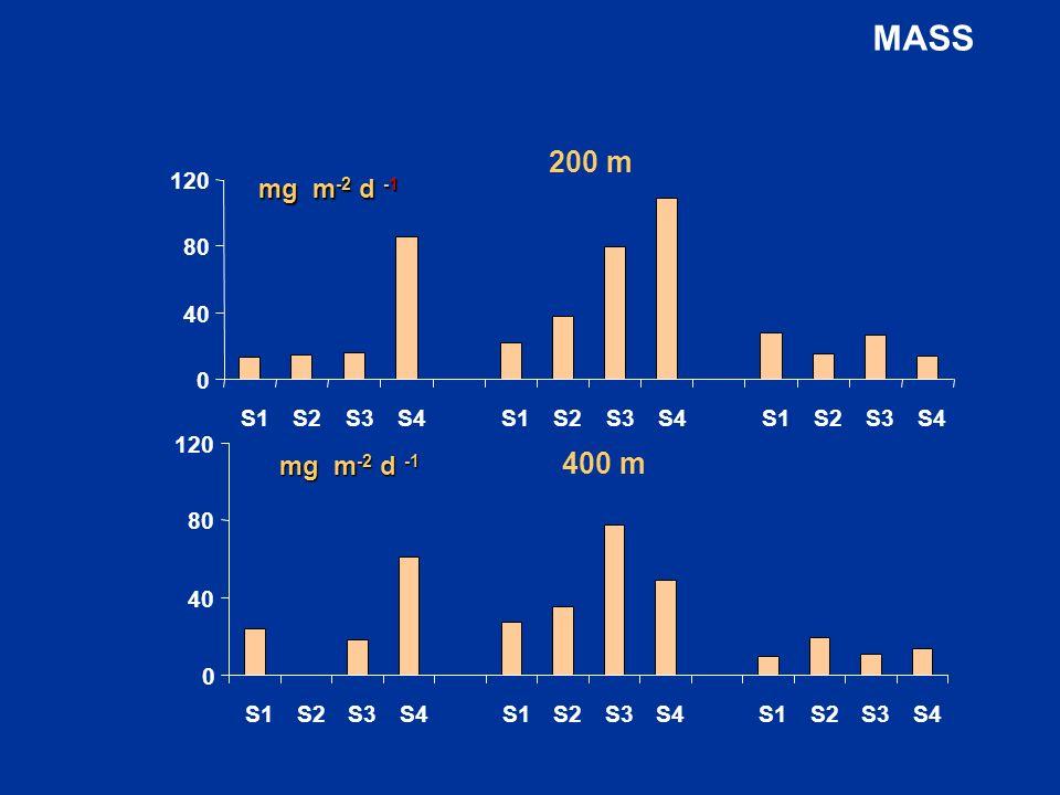 MASS 40 80 120 S1 S2 S3 S4 200 m mg m-2 d -1 400 m