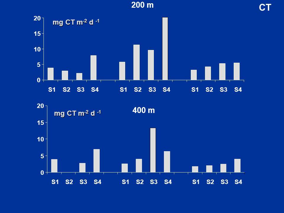 200 m CT 5 10 15 20 S1 S2 S3 S4 400 m mg CT m-2 d -1