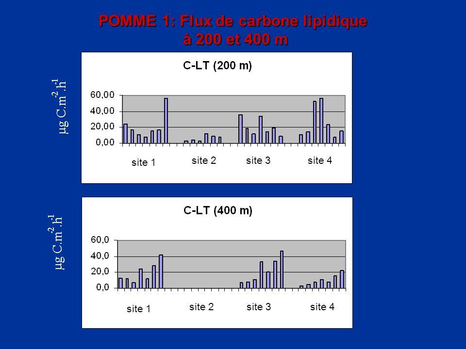 POMME 1: Flux de carbone lipidique à 200 et 400 m