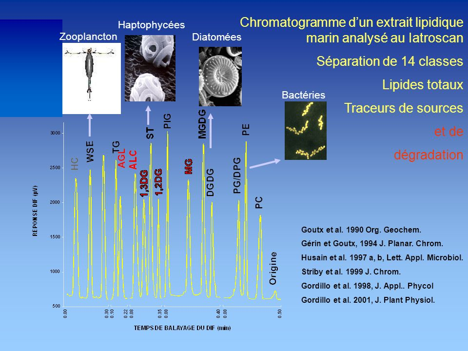 Chromatogramme d'un extrait lipidique marin analysé au Iatroscan