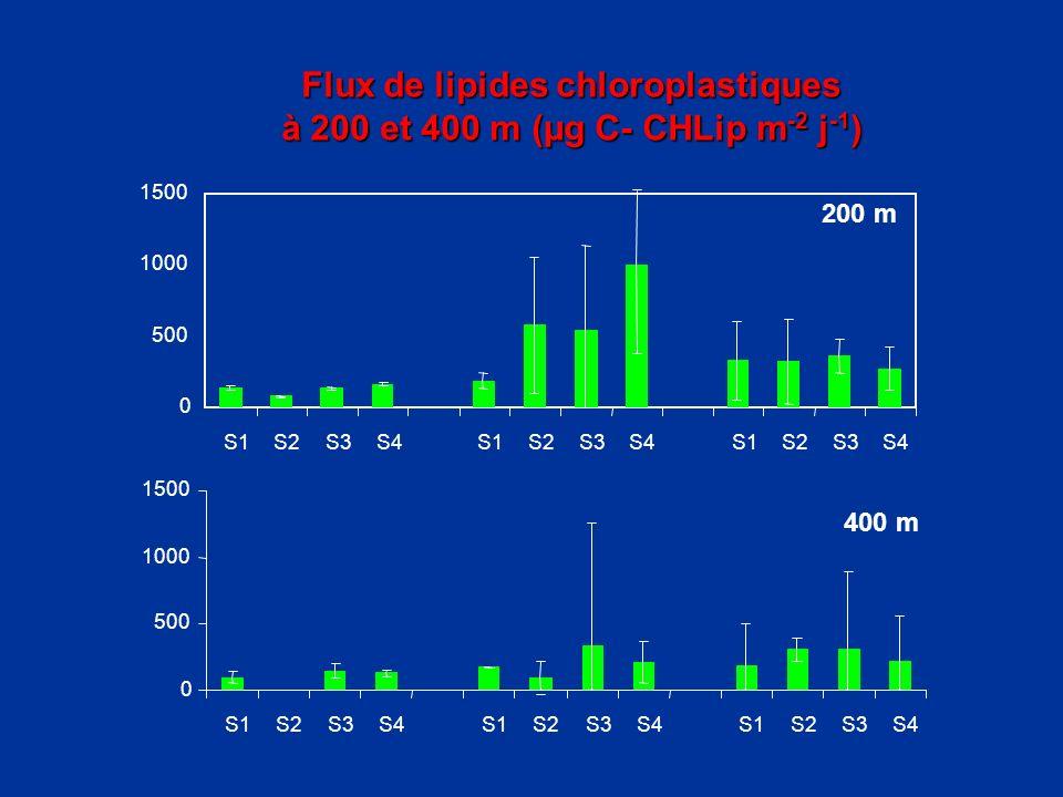 Flux de lipides chloroplastiques