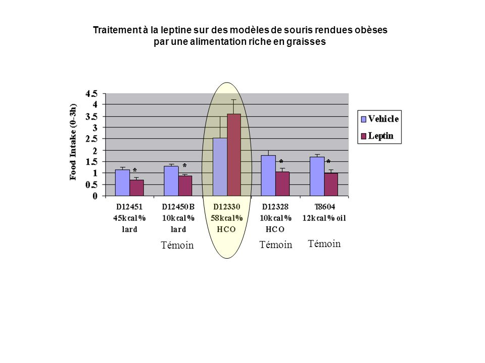 Traitement à la leptine sur des modèles de souris rendues obèses