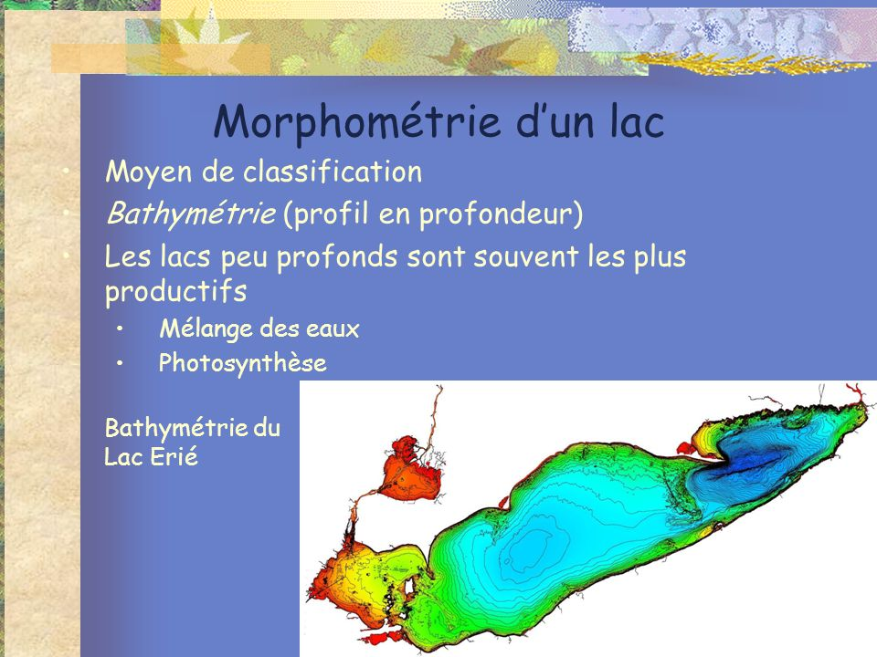 Morphométrie d'un lac Moyen de classification