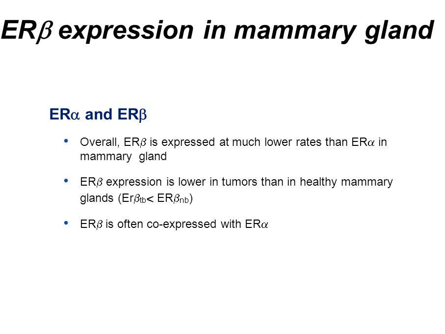 ERb expression in mammary gland
