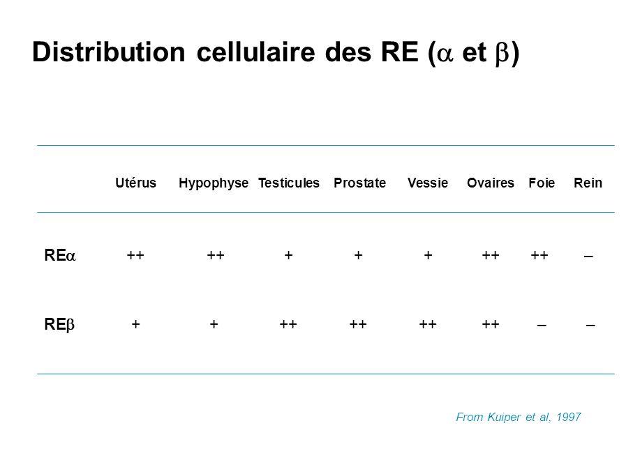 Distribution cellulaire des RE (a et b)
