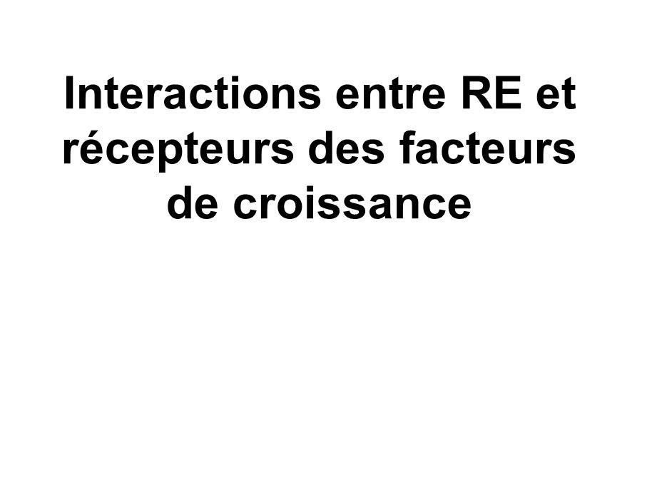 Interactions entre RE et récepteurs des facteurs de croissance