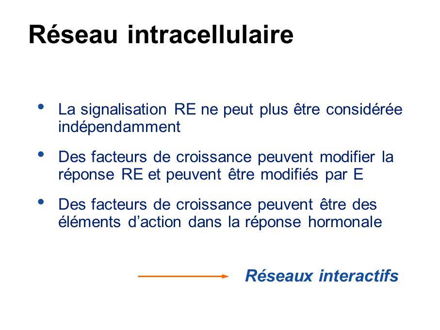 Réseau intracellulaire