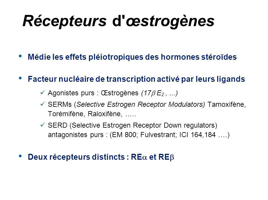 Récepteurs d œstrogènes
