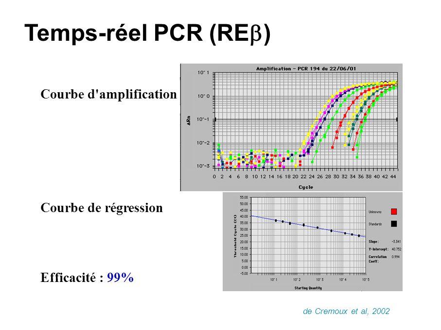 Temps-réel PCR (REb) Courbe d amplification Courbe de régression