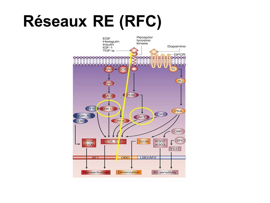 Réseaux RE (RFC)