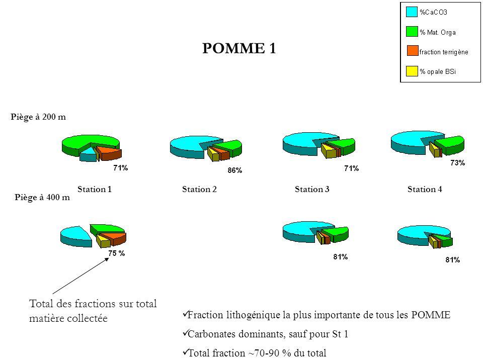 POMME 1 Total des fractions sur total matière collectée