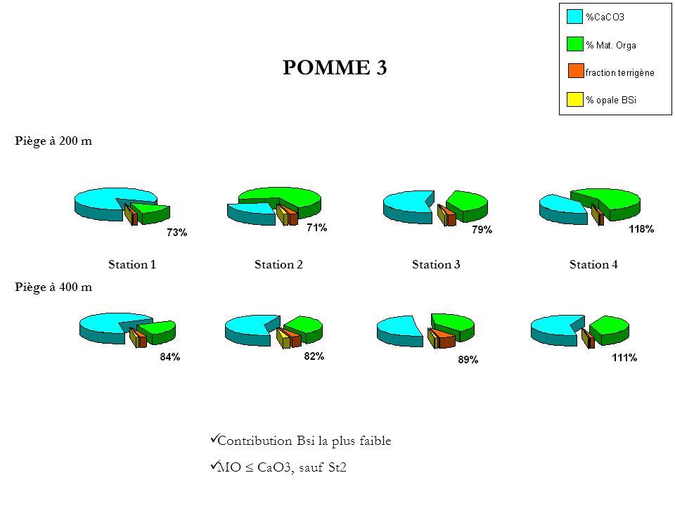 POMME 3 Contribution Bsi la plus faible MO  CaO3, sauf St2