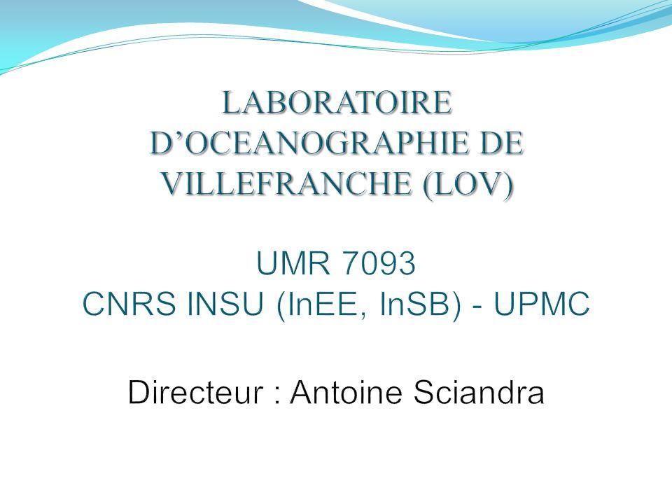 LABORATOIRE D'OCEANOGRAPHIE DE VILLEFRANCHE (LOV) UMR 7093 CNRS INSU (InEE, InSB) - UPMC Directeur : Antoine Sciandra