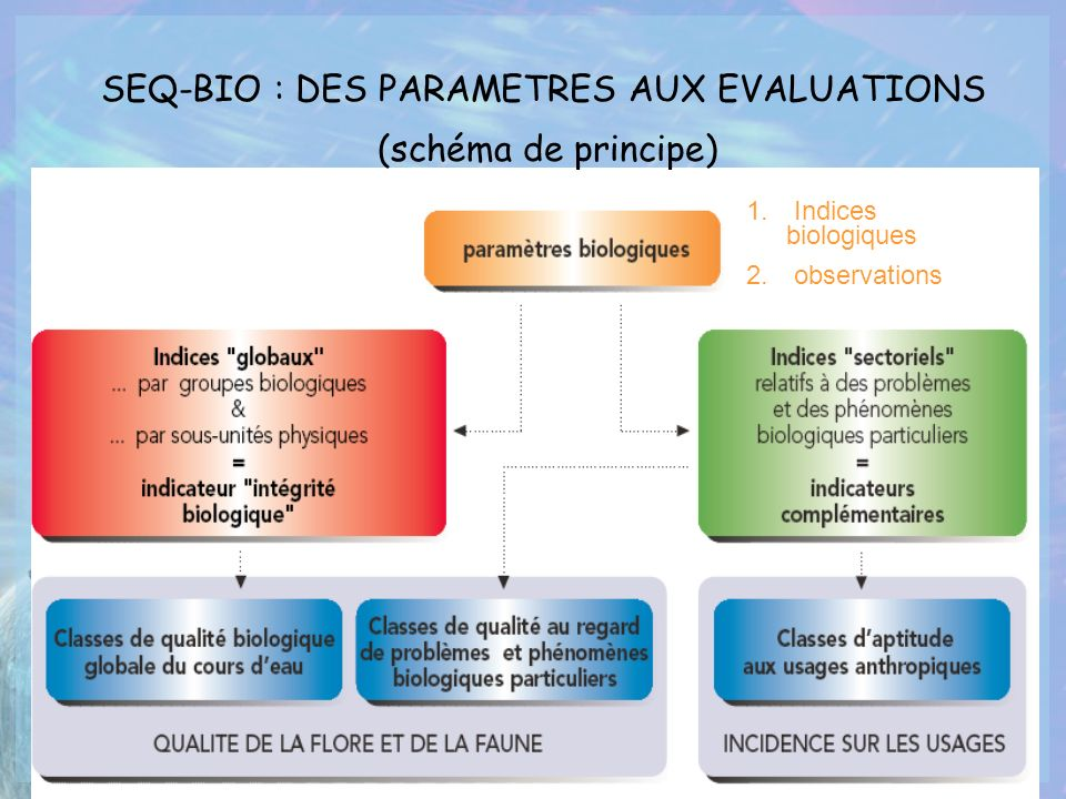 SEQ-BIO : DES PARAMETRES AUX EVALUATIONS