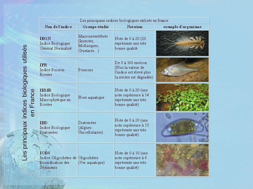 Les principaux indices biologiques utilisés en France