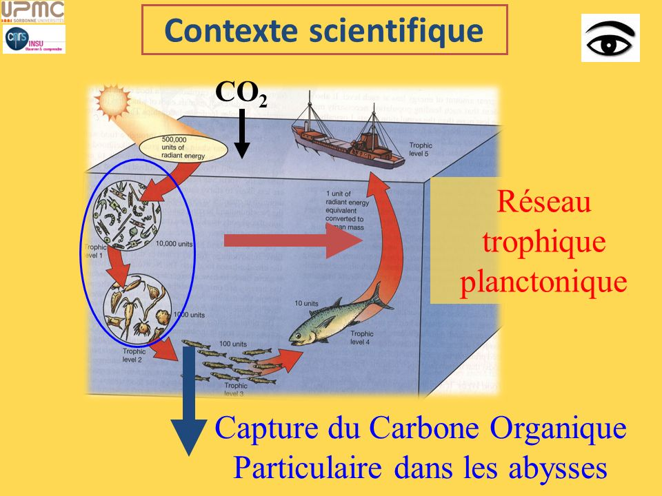 Contexte scientifique