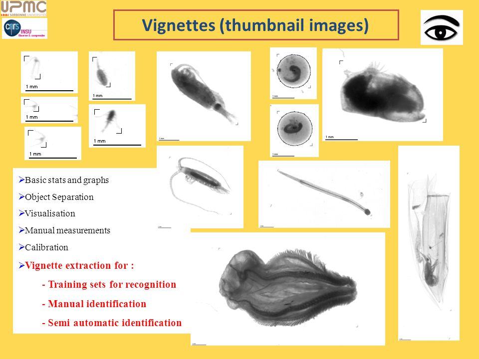 Vignettes (thumbnail images)