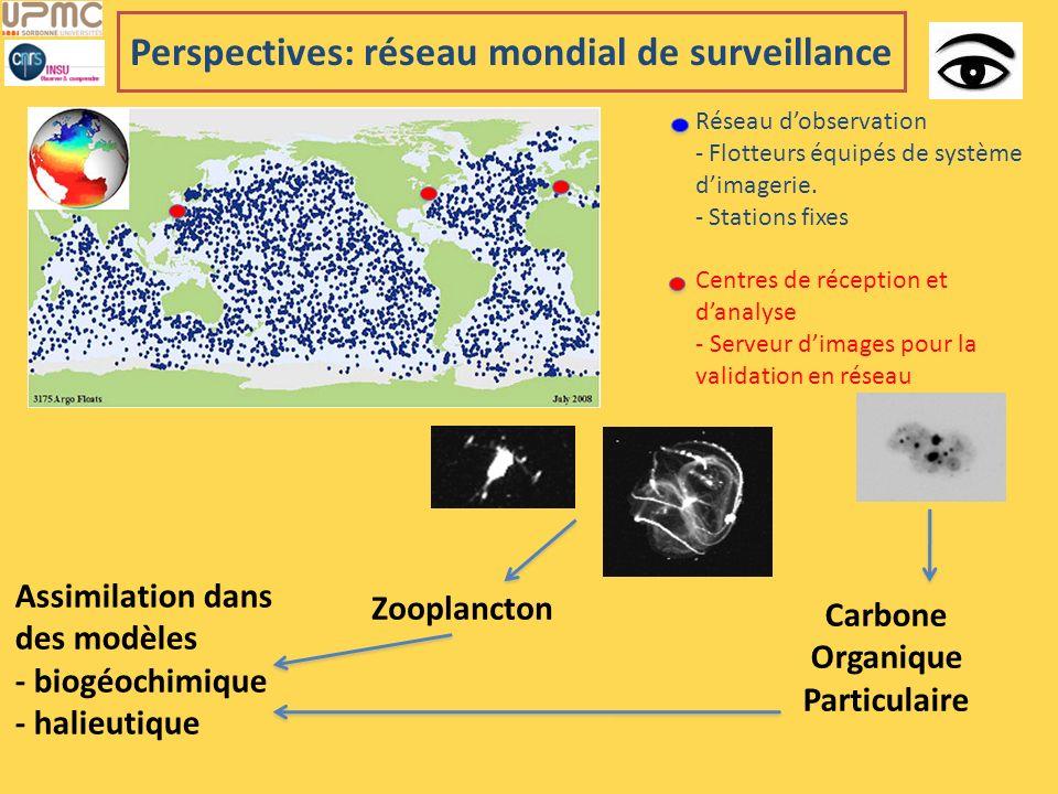 Perspectives: réseau mondial de surveillance