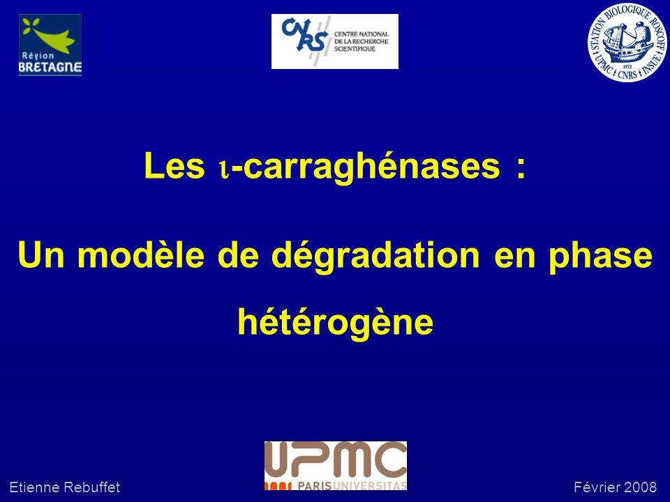 Un modèle de dégradation en phase hétérogène