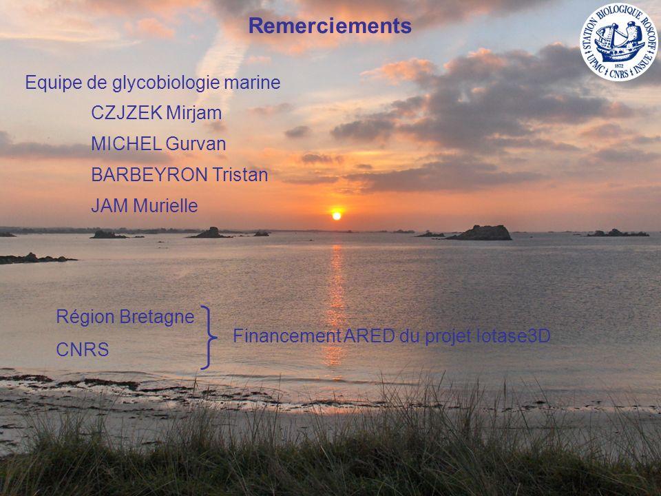 Remerciements Equipe de glycobiologie marine CZJZEK Mirjam