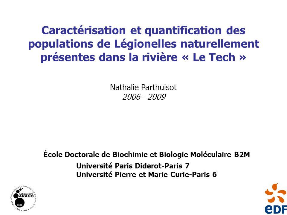 Caractérisation et quantification des populations de Légionelles naturellement présentes dans la rivière « Le Tech »