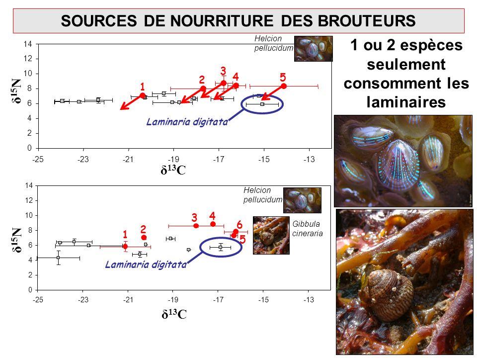 SOURCES DE NOURRITURE DES BROUTEURS