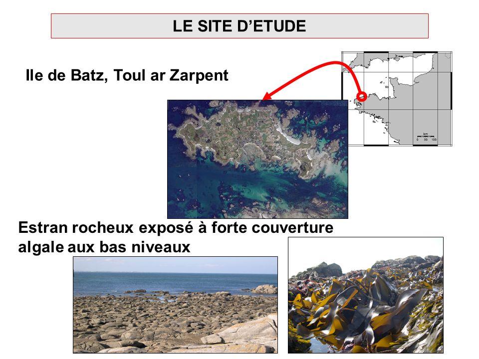 LE SITE D'ETUDE Ile de Batz, Toul ar Zarpent.