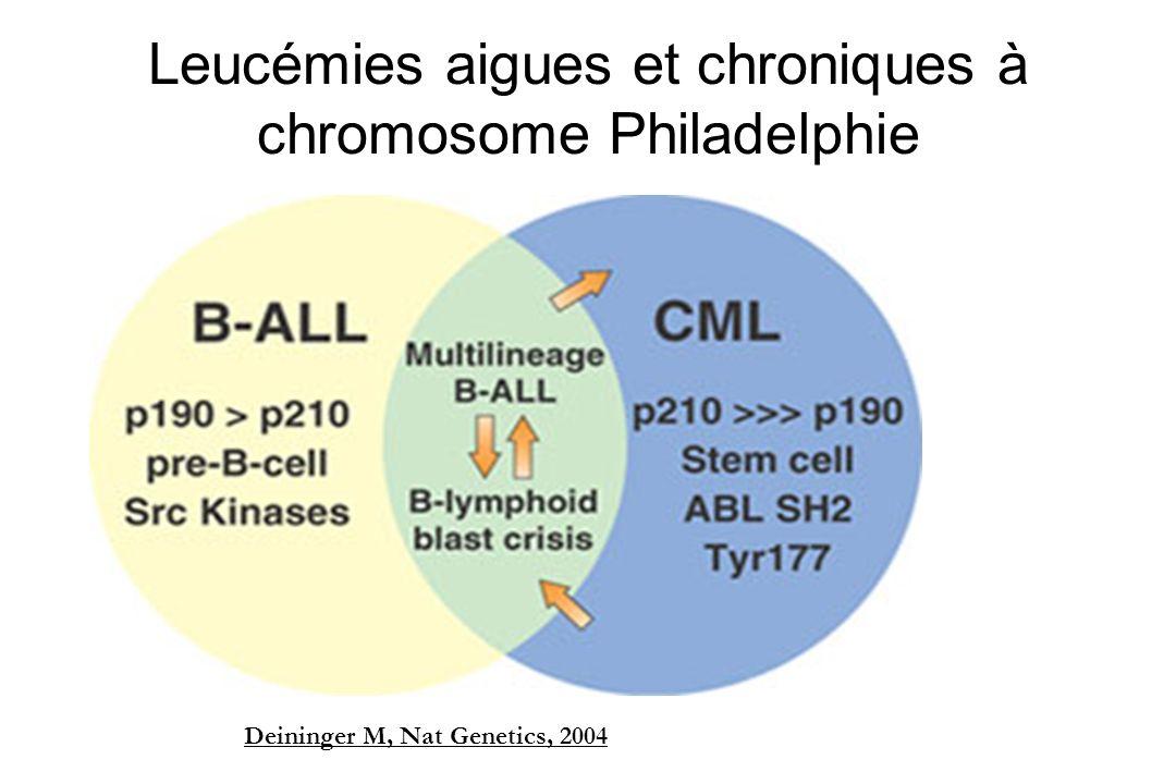 Leucémies aigues et chroniques à chromosome Philadelphie