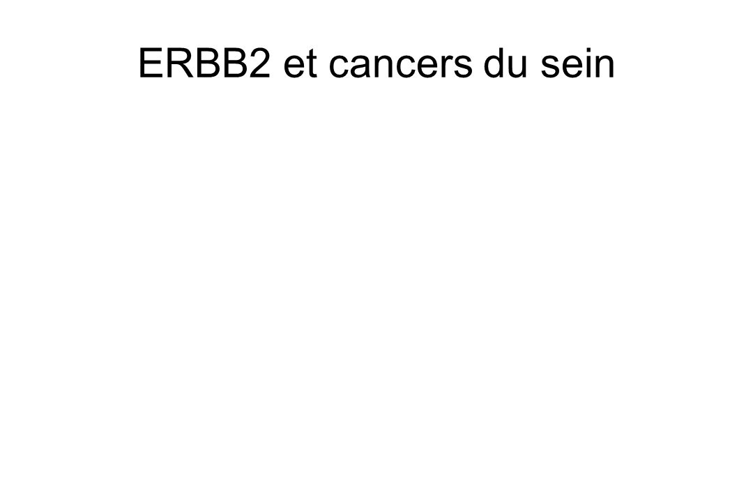 ERBB2 et cancers du sein