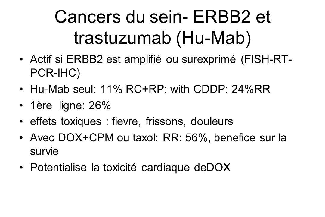 Cancers du sein- ERBB2 et trastuzumab (Hu-Mab)