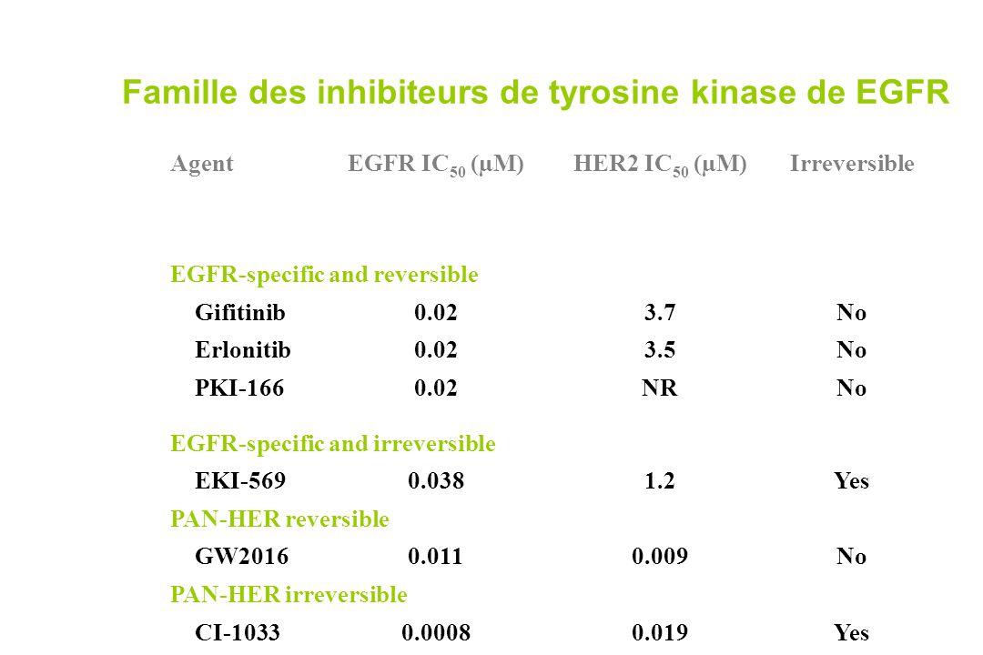 Famille des inhibiteurs de tyrosine kinase de EGFR