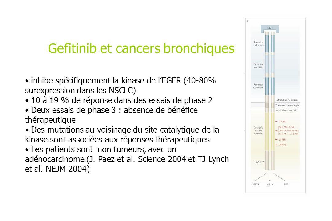 Gefitinib et cancers bronchiques