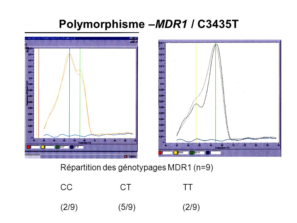 Polymorphisme –MDR1 / C3435T