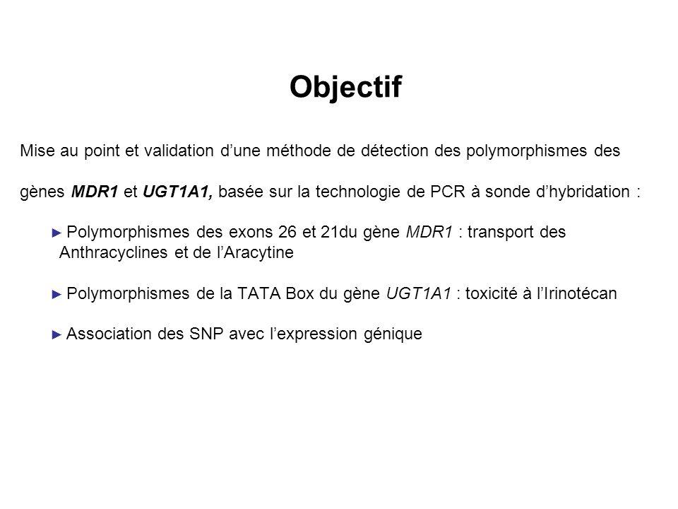 Objectif Mise au point et validation d'une méthode de détection des polymorphismes des.