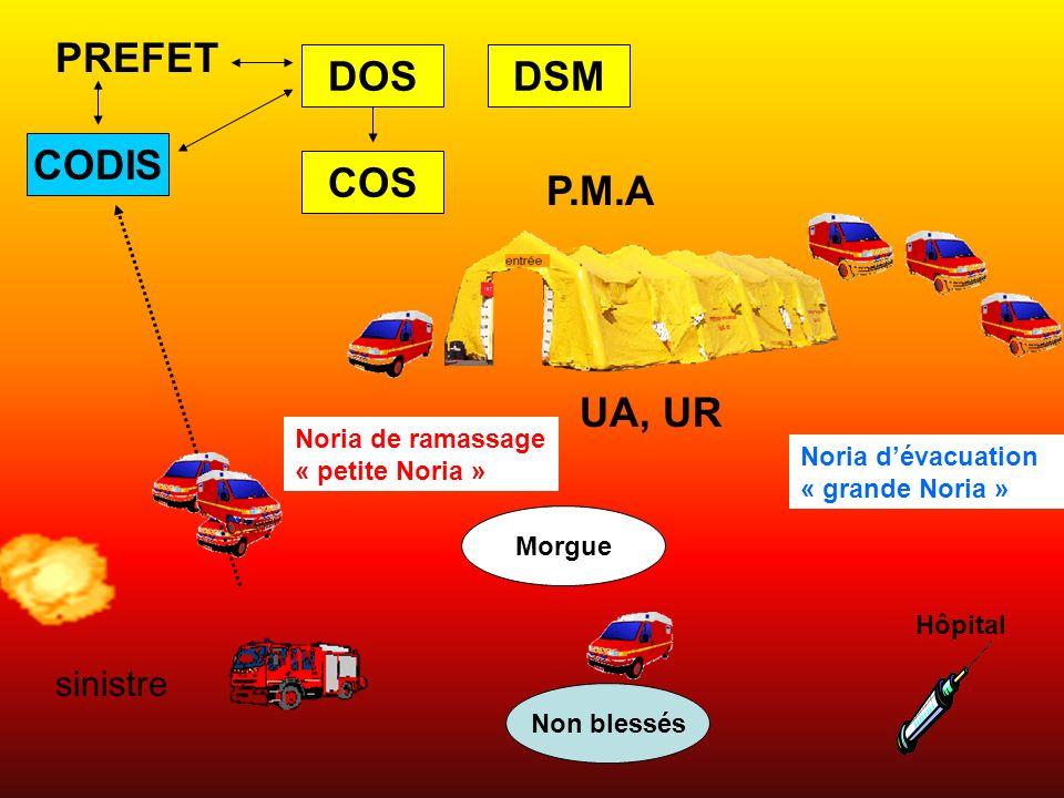 PREFET DOS DSM CODIS COS P.M.A UA, UR