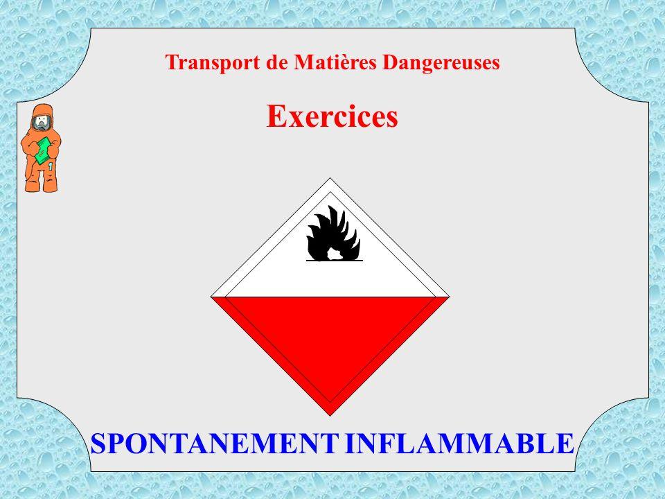 Transport de Matières Dangereuses SPONTANEMENT INFLAMMABLE