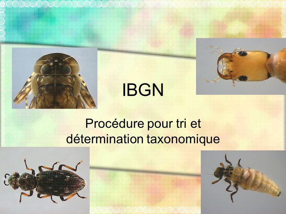 Procédure pour tri et détermination taxonomique