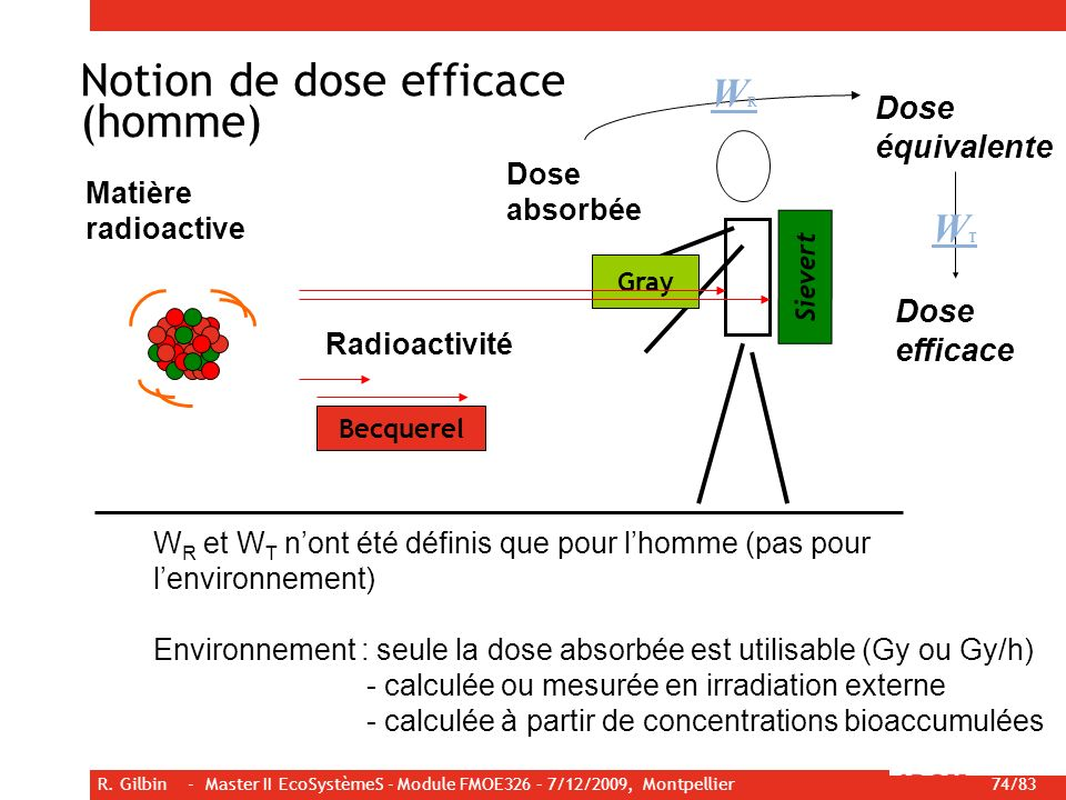 Notion de dose efficace (homme)