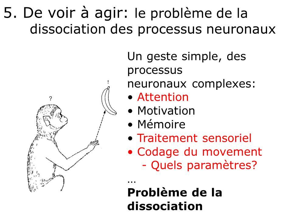 5. De voir à agir: le problème de la dissociation des processus neuronaux