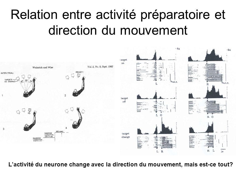 Relation entre activité préparatoire et direction du mouvement