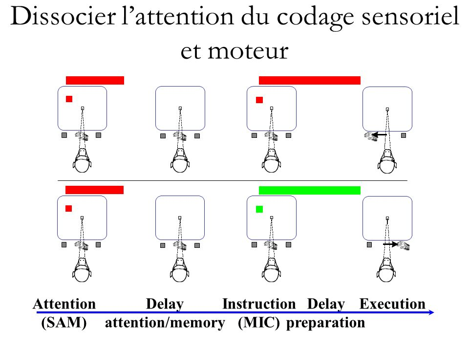 Dissocier l'attention du codage sensoriel et moteur